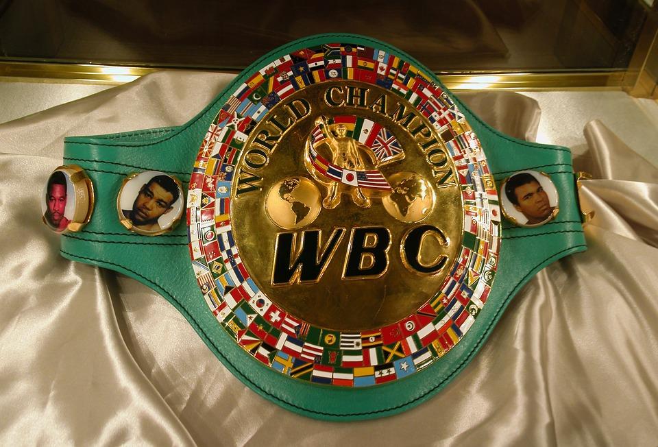 スポーツの歴史 世界ボクシング...