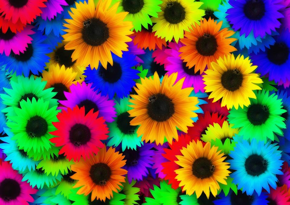 Sunflower Colorful Color Pop Art Hippie