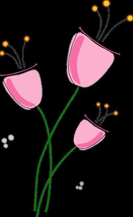 Fiori, Fiore, Estate Fiori, Fiori Viola, Porpora