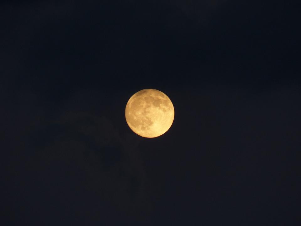 夜狼福利影音12