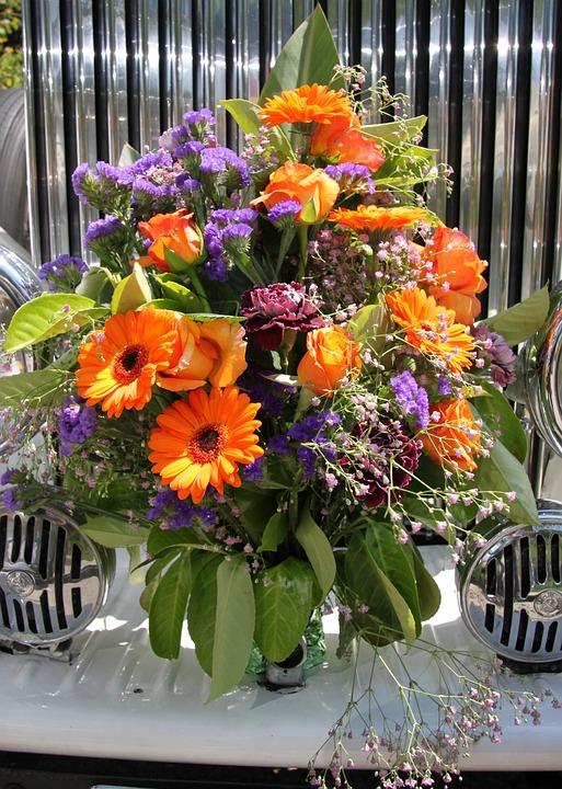 Flori De Vară Natura Fotografie Gratuită Pe Pixabay