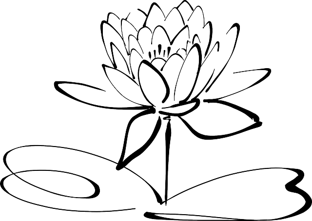 Pink Flower Line Drawing : Lotus flower line art · free vector graphic on pixabay
