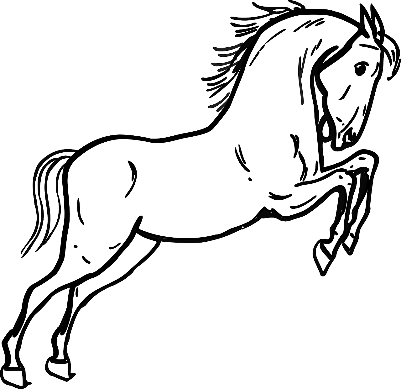 Horse Jumping Standing Free Vector Graphic On Pixabay