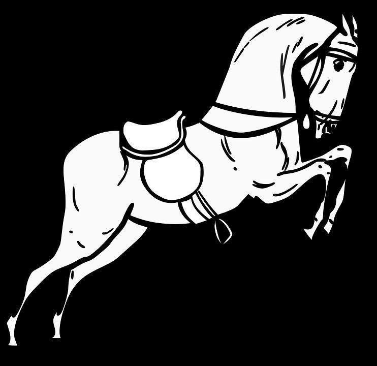 Caballo Saltar De Pie · Gráficos vectoriales gratis en Pixabay