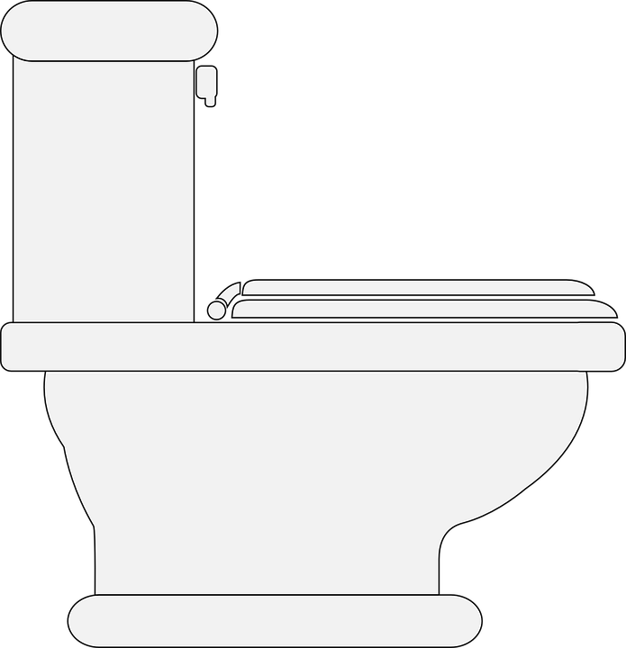Toilet Restroom Lavatory · Free vector graphic on Pixabay