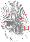 fingerprint, detective, criminal