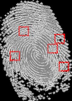 指紋, 探偵, 刑事, 証拠, 犯罪のシーン, 犯罪