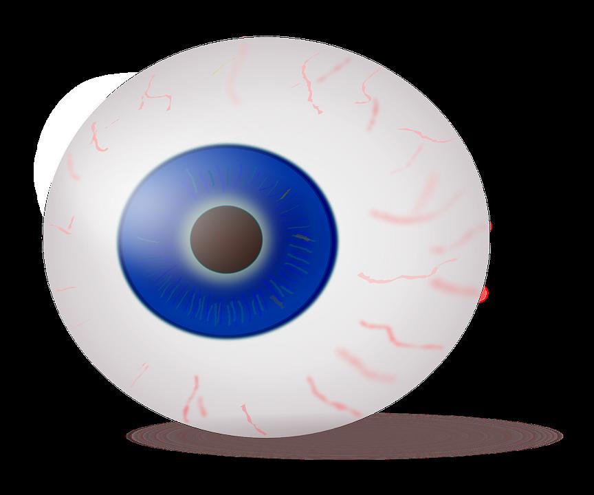 Auge Augapfel Iris · Kostenlose Vektorgrafik auf Pixabay