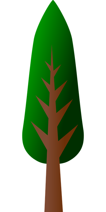Tree Forest Plant Free Vector Graphic On Pixabay