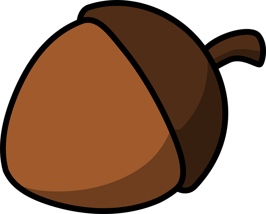 tree nut clip art - photo #5