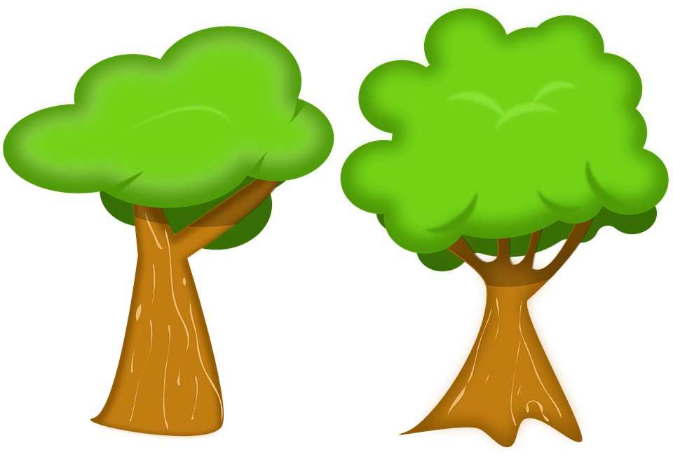 Tree Environment Ecology Free Vector Graphic On Pixabay