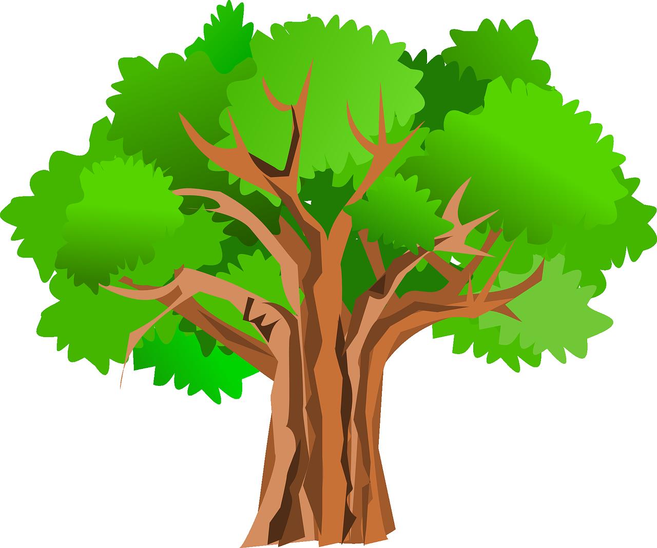 Дерево в картинках для детей, рдш 2018 результаты