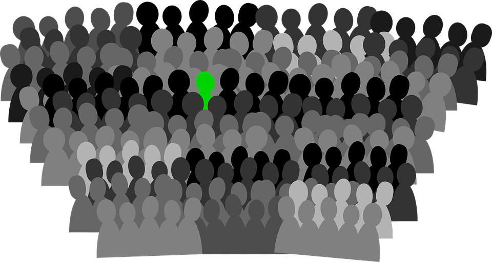 Vote, Crowd, Conference, Group, Convention, Audience
