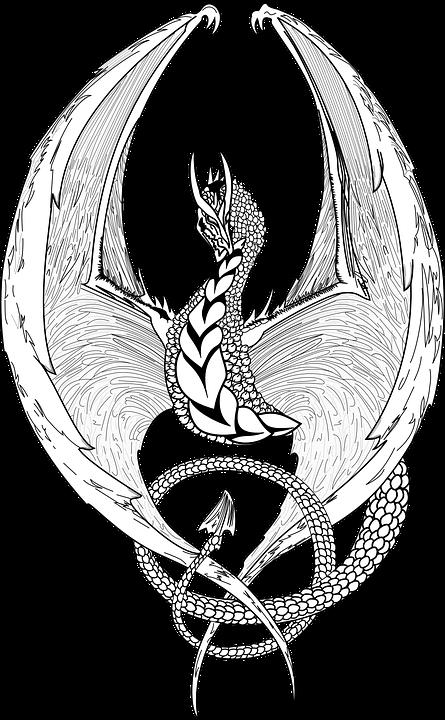 free vector graphic dragon fantasy lizard mystic