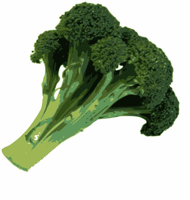 Free Vector Graphic Broccoli Food Green Healthy Free