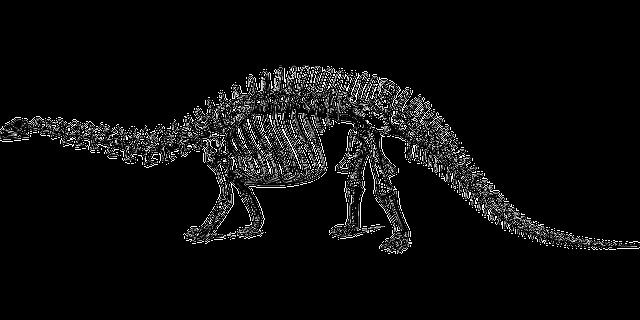 Free Vector Graphic: Dinosaur, Fossil, Paleontology