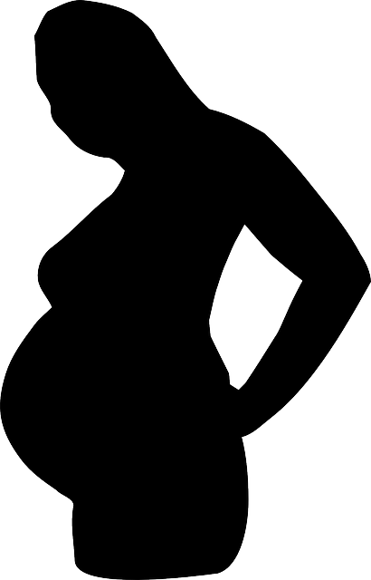 Free vector graphic: Pregnant, Belly, Female, Mother ...