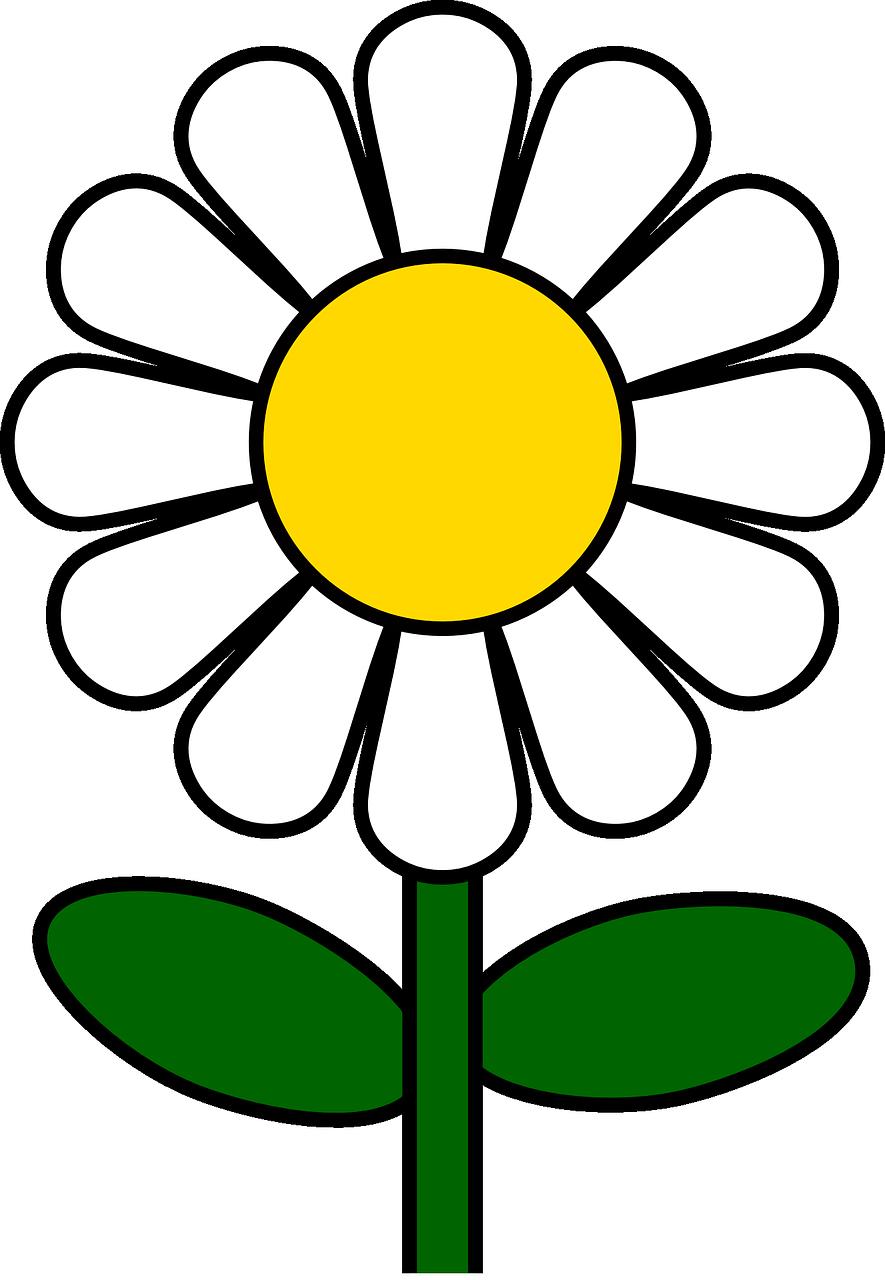 Раскраски цветы для детей 3-4 лет распечатать