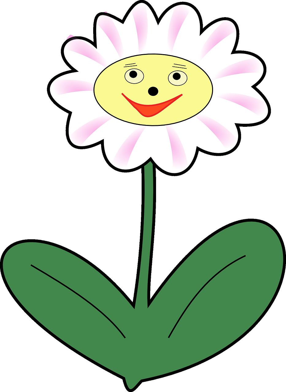 Цветок с лицом картинки