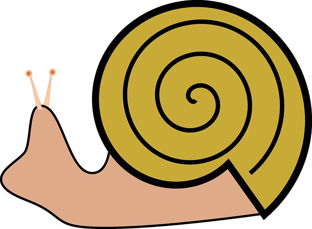Lumaca di vigna grafica vettoriale gratuita su pixabay - Clipart escargot ...