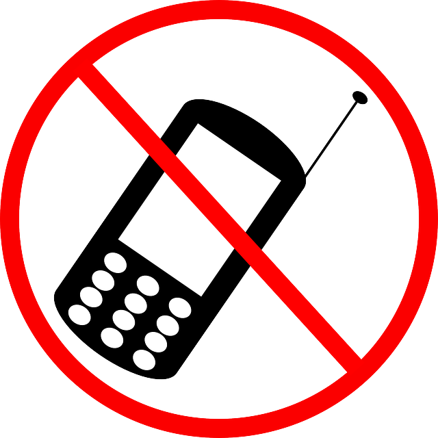 Pros & Cons of Banning Cell Phones in Public Places