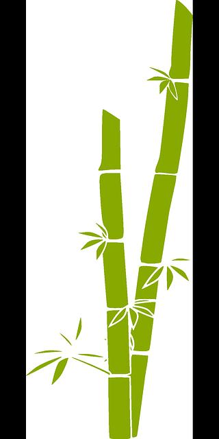 Cartoon Bamboo Stick ~ Free vector graphic bamboo nature tree plant green