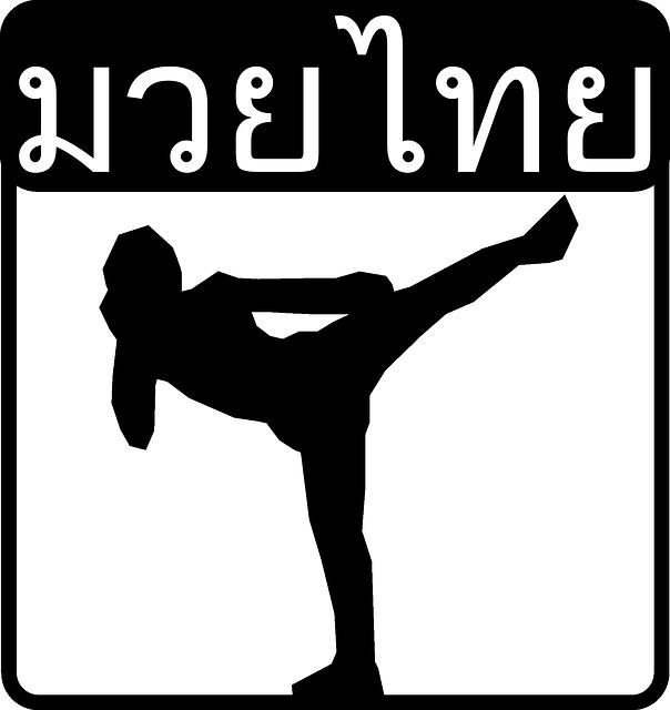 artes marciais muay thai boxe  u00b7 gr u00e1fico vetorial gr u00e1tis no