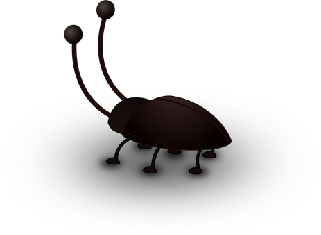 Cockroach, Insect, Bug, Animal, Antenna