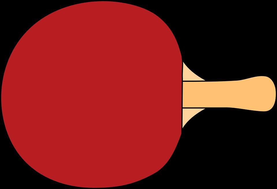 paddle table tennis racket