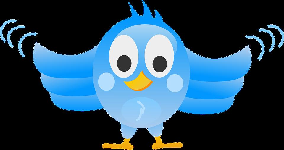 Tweeting, Twitter, Bird, Blue, Peep, Tweet, Wings