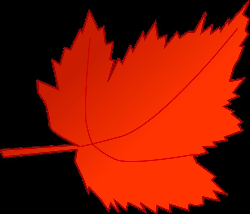 the red tree kiernan pdf