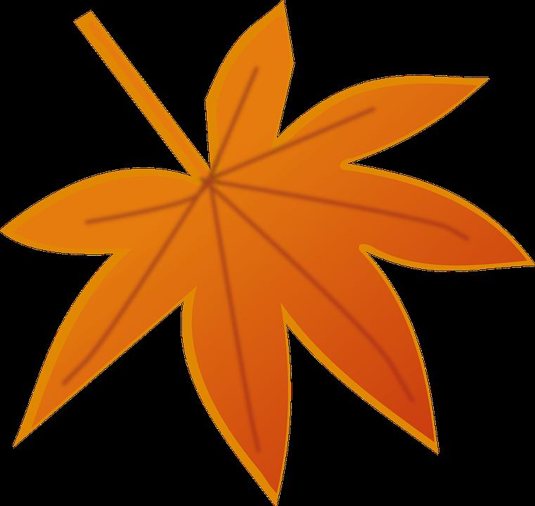 esrar ve sonbahar yaprak  u00b7 pixabay da  u00fccretsiz vekt u00f6r grafik shapes clip art free shapes clip art printable free