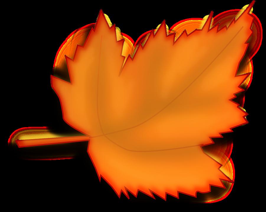 image vectorielle gratuite 201rable automne feuilles