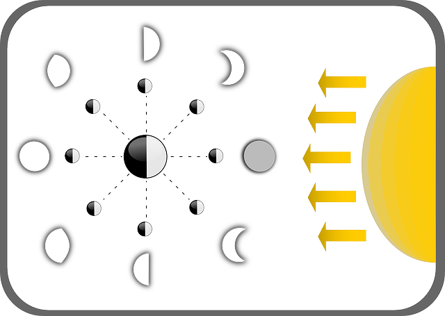Phases Of The Moon Diagram  U00b7 Free Vector Graphic On Pixabay