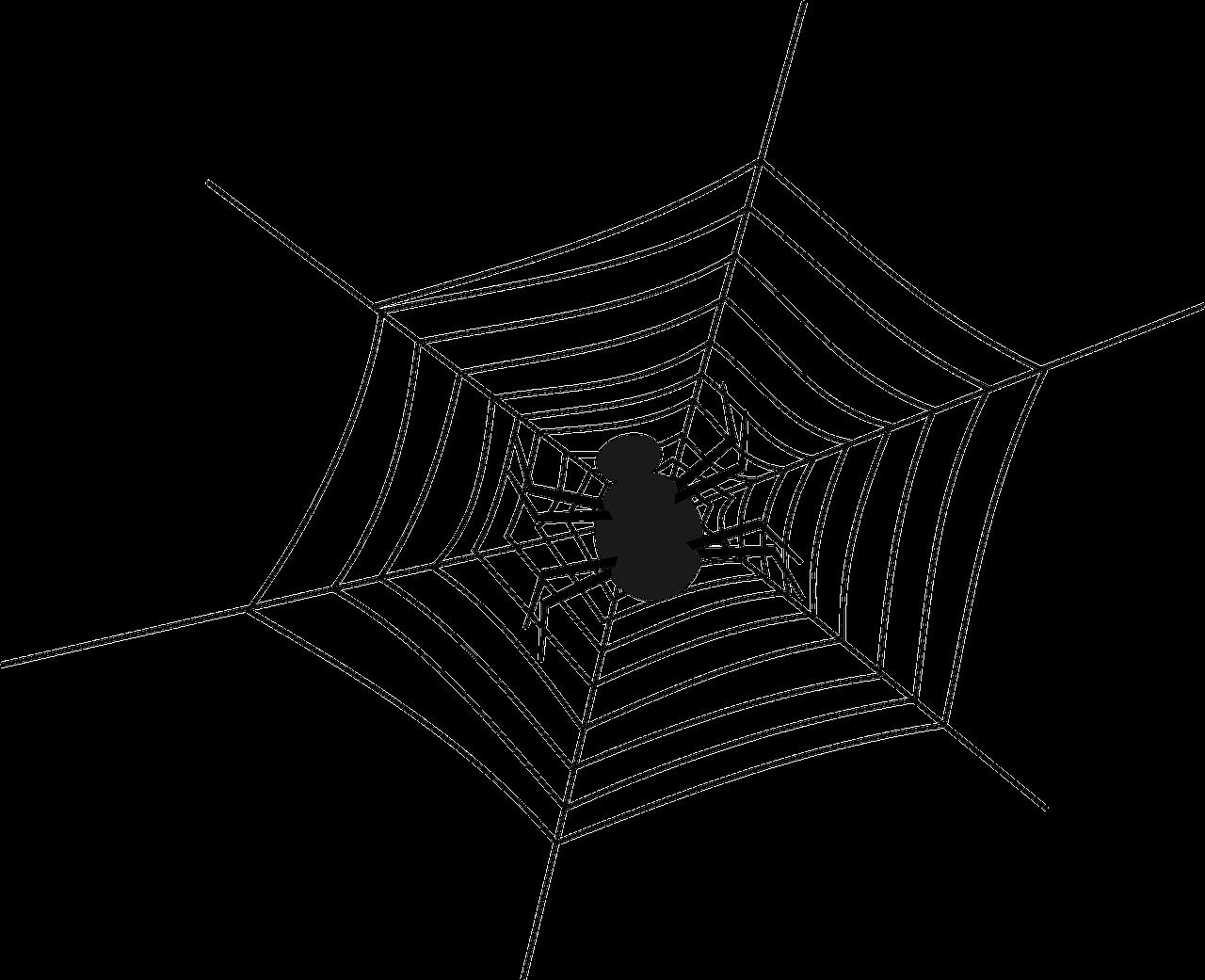 каминов картинки пауков на паутине нарисовать включают сосудистые