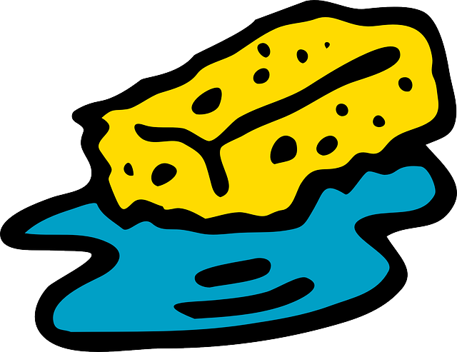 Tafelschwamm clipart  Kostenlose Vektorgrafik: Schwamm, Reinigung, Sauber, Wasser ...