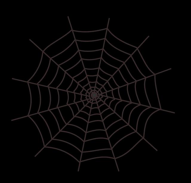 kostenlose vektorgrafik  spinnennetz  halloween  spinne - kostenloses bild auf pixabay