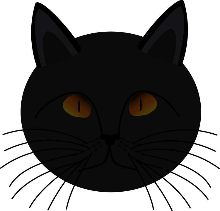 Gambar Kucing Png godean.web.id