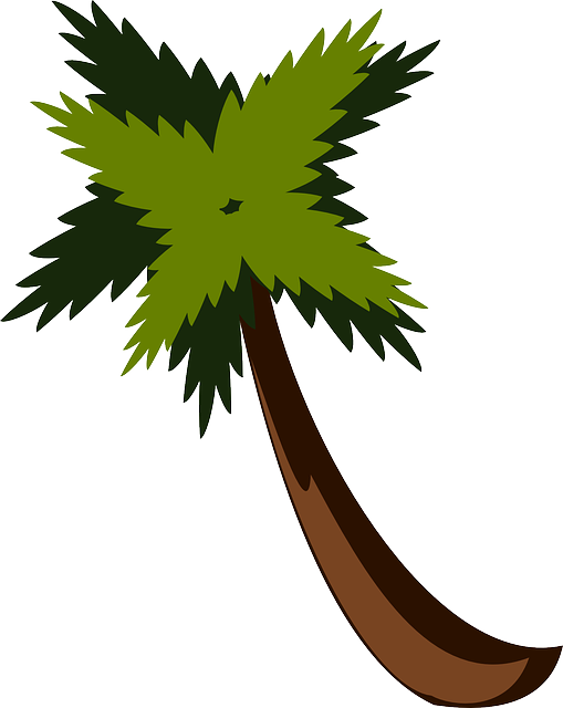Free Vector Graphic Palm Tree Beach Jungle Palm Free