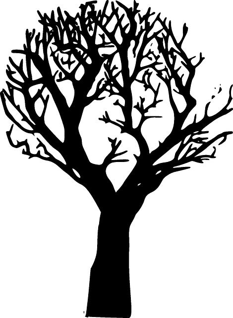 Forest Decline Dieback 183 Free Vector Graphic On Pixabay