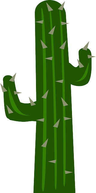 free vector graphic cacti cactus garden gardening