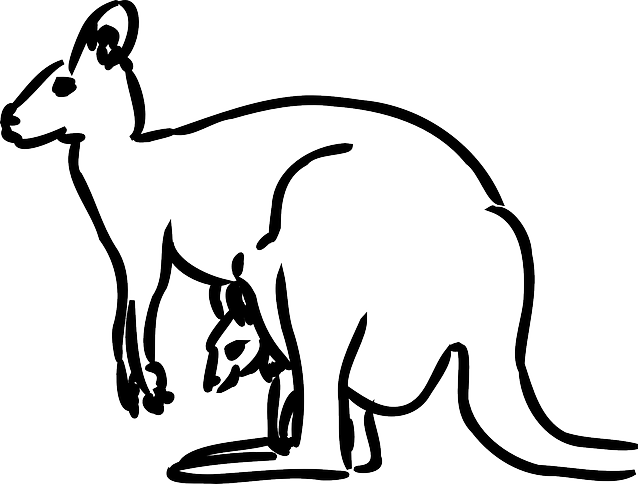 Kangaroo Baby Animal · Free vector graphic on Pixabay Mammals Clipart Black And White