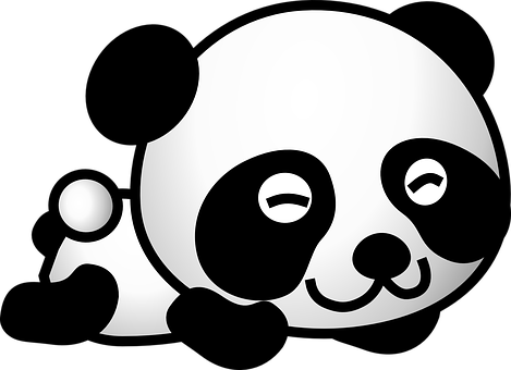 Panda, Bear, Cute, Happy, Young, Animal