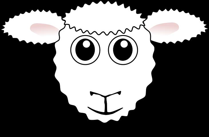 Лица овечек нарисованных