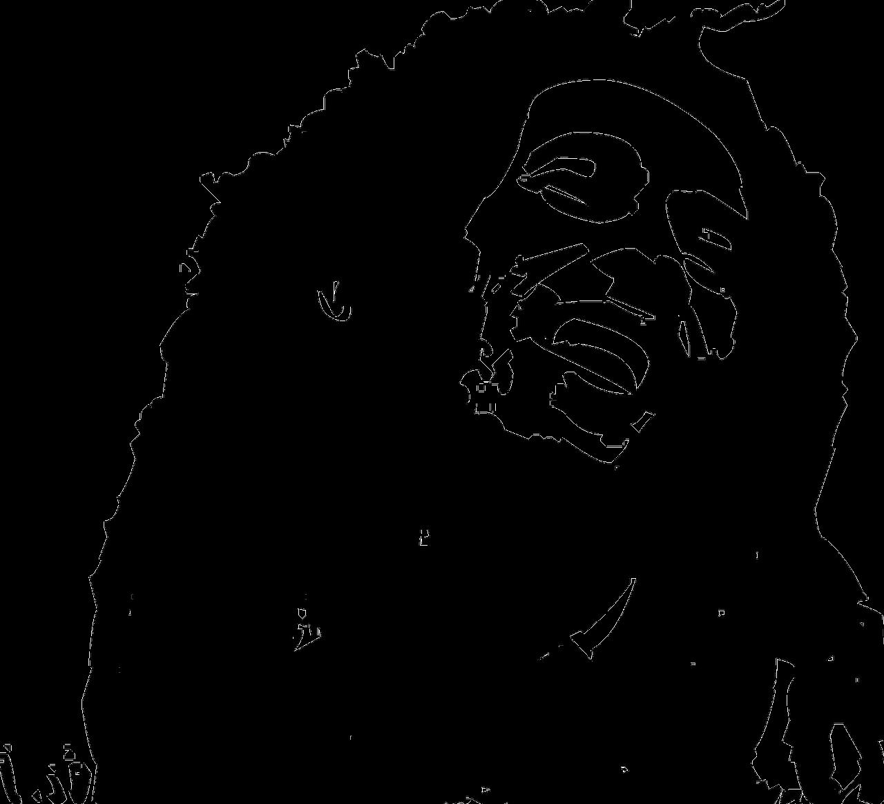 Bob Marley Reggae Artist Free Vector Graphic On Pixabay