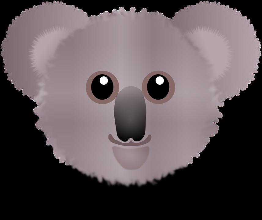 imagem vetorial gratis coala urso wombat urso coala imagem gratis no pixabay 151801. Black Bedroom Furniture Sets. Home Design Ideas