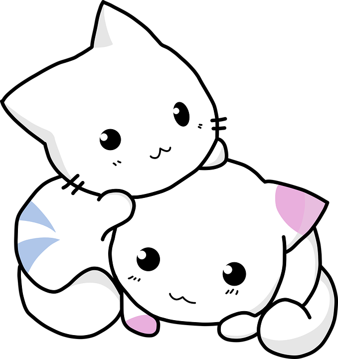 Image of: White Kitty Cuddling Cat Kitten Feline Cute Adorable Pixabay Kitty Cuddling Cat Kitten Free Vector Graphic On Pixabay