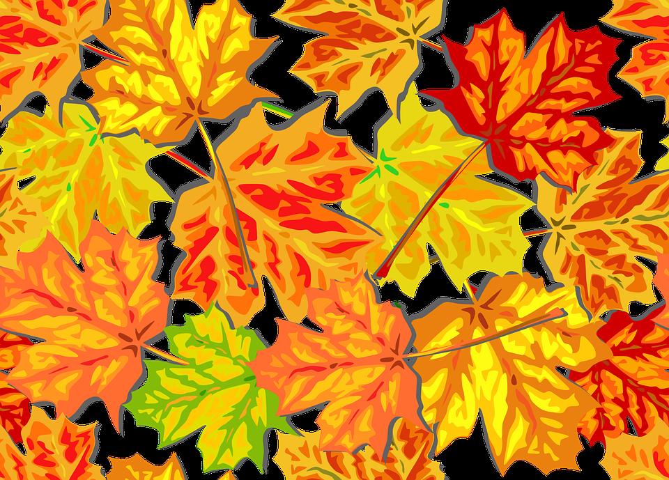 Autumn, Foliage, Fall, Leaves, Maple, Tile, Background