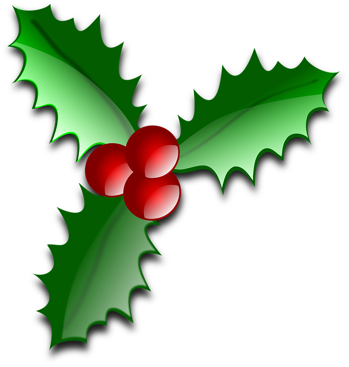 Clip Art Holly Leaves Clipart holly leaf free images on pixabay ilex leaves thorns evergreen