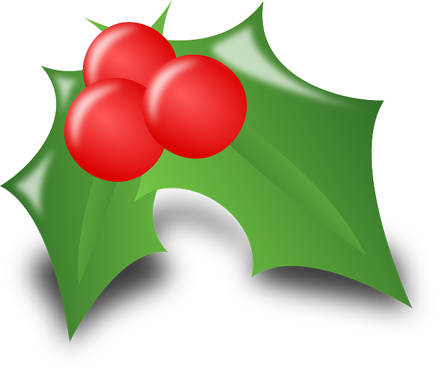 Holly Ilex Leaves  Free Vector Graphic On Pixabay-7990